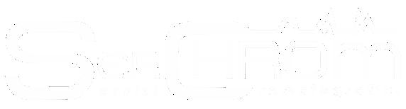 logo serchrom servizi cromatografici